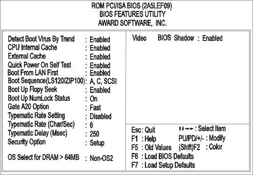 BIOSAward_BiosFeatures_VA503